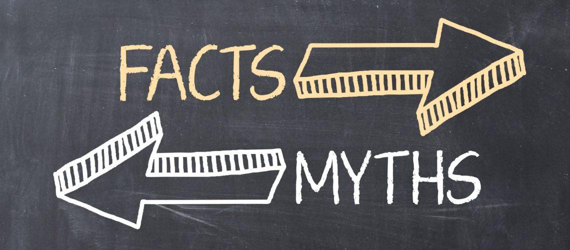 fakty i mity o jadzie pszczelim