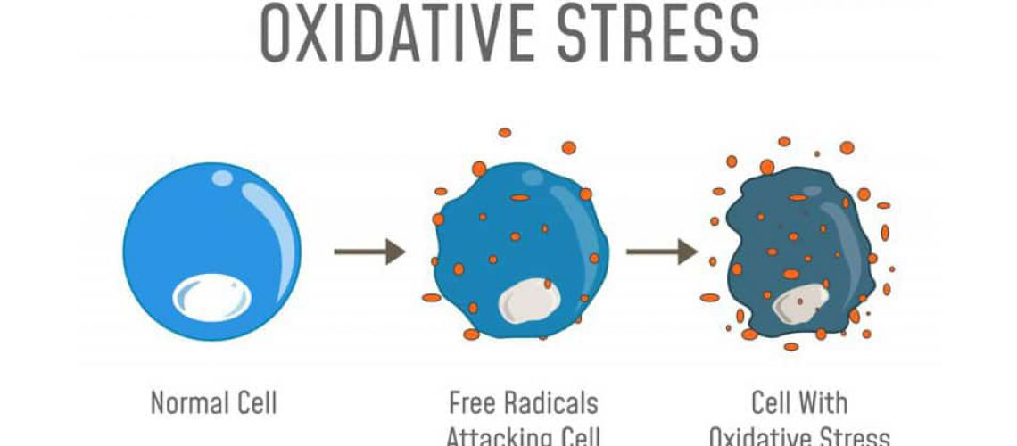 stres oksydacyjny skóry
